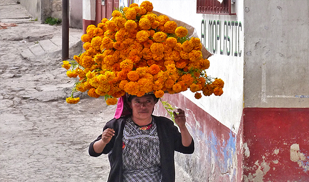 Woman taking Flowers for the Saint Day in Guatemala